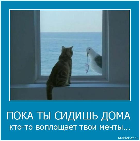 ПОКА ТЫ СИДИШЬ ДОМА  кто-то воплощает твои мечты...