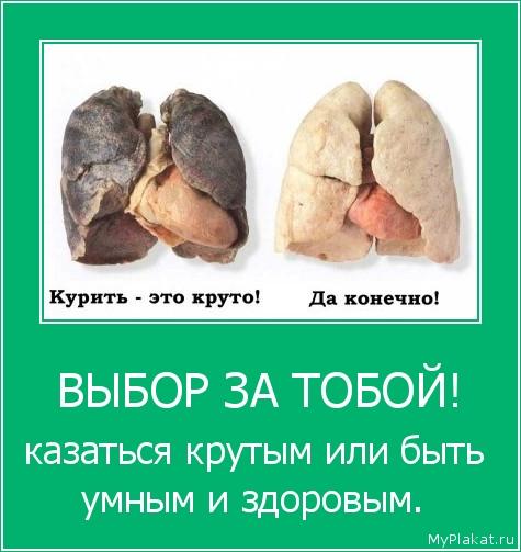 ВЫБОР ЗА ТОБОЙ! казаться крутым или быть умным и здоровым.