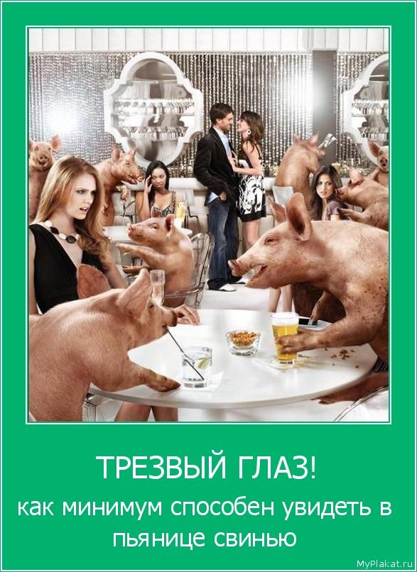 ТРЕЗВЫЙ ГЛАЗ! как минимум способен увидеть в пьянице свинью