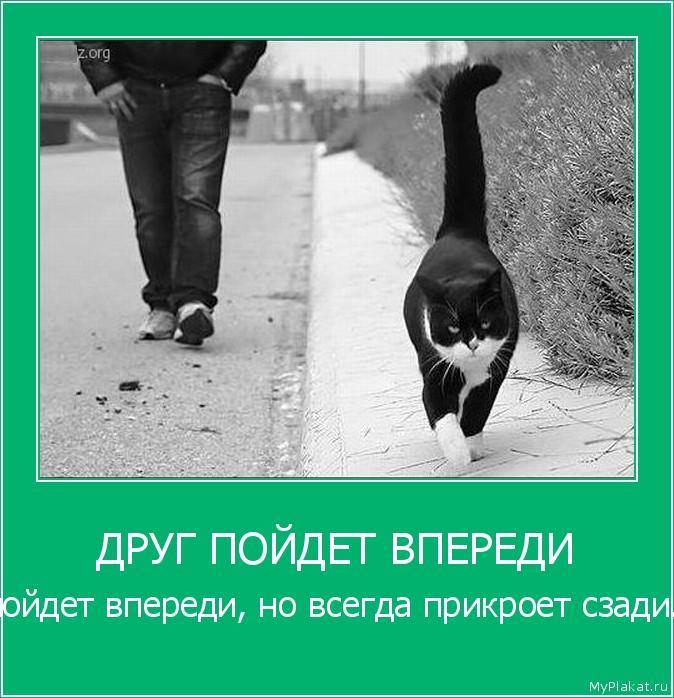 Помогай друзьям