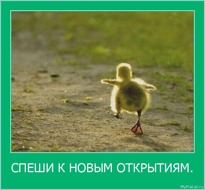 СПЕШИ К НОВЫМ ОТКРЫТИЯМ.