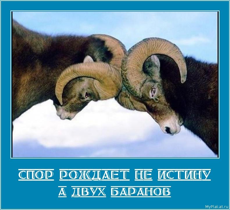 СПОР РОЖДАЕТ НЕ ИСТИНУ а двух баранов