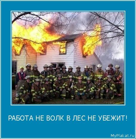 РАБОТА НЕ ВОЛК В ЛЕС НЕ УБЕЖИТ!