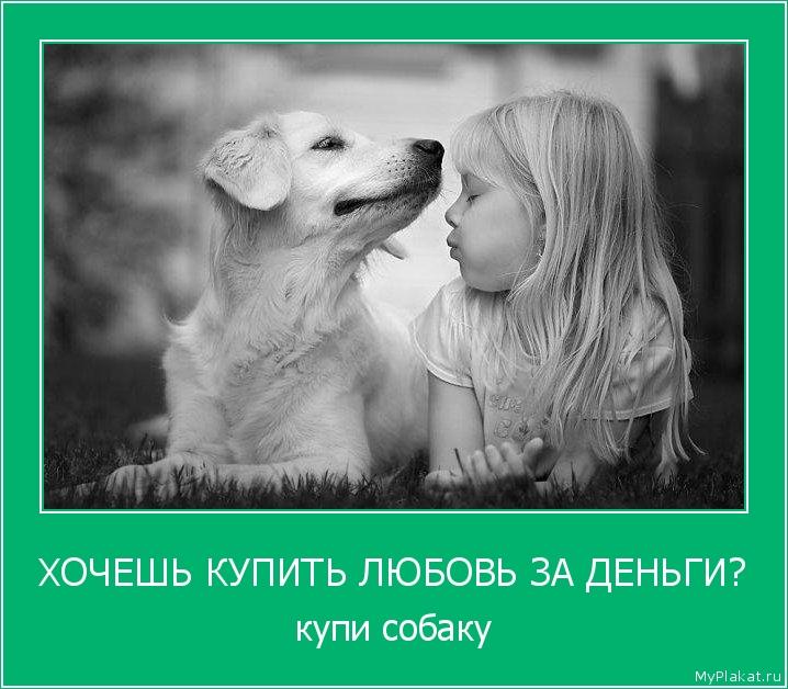 ХОЧЕШЬ КУПИТЬ ЛЮБОВЬ ЗА ДЕНЬГИ? купи собаку