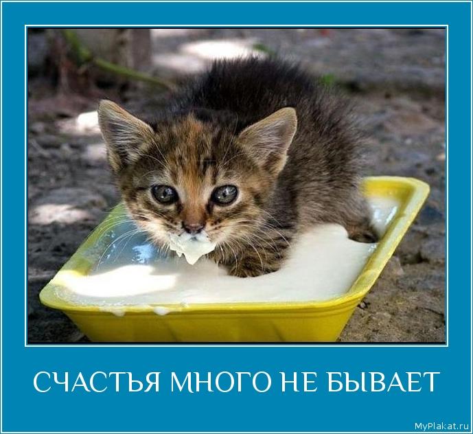 Олег Винник - Счастье Бывает Разное. скачать