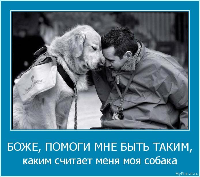 БОЖЕ, ПОМОГИ МНЕ БЫТЬ ТАКИМ, каким считает меня моя собака