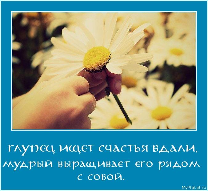 ГЛУПЕЦ ИЩЕТ СЧАСТЬЯ ВДАЛИ, мудрый выращивает его рядом с собой.