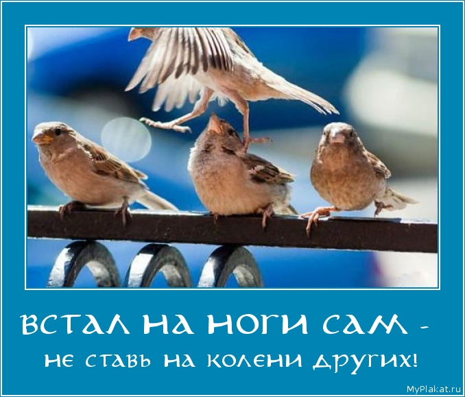 ВСТАЛ НА НОГИ САМ -  не ставь на колени других!