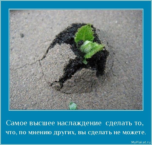 Самое высшее наслаждение  сделать то,  что, по мнению других, вы сделать не можете.
