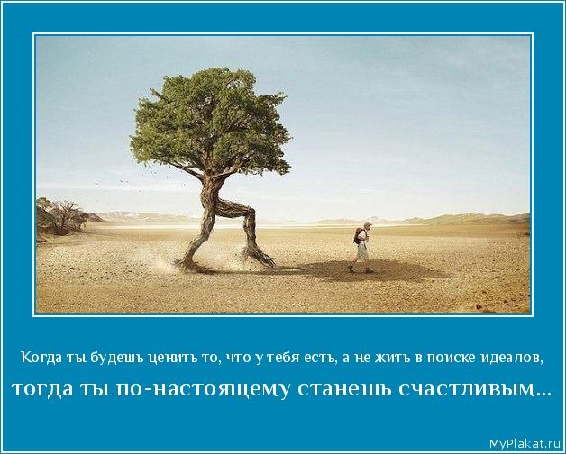 Когда ты будешь ценить то, что у тебя есть, а не жить в поиске идеалов,  тогда ты по-настоящему станешь счастливым...