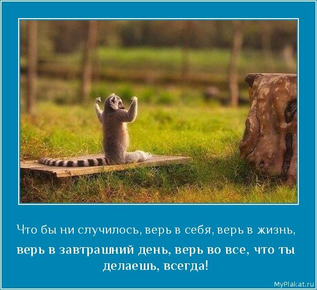 Что бы ни случилось, верь в себя, верь в жизнь,  верь в завтрашний день, верь во все, что ты делаешь, всегда!