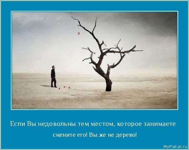 Если Вы недовольны тем местом, которое занимаете   смените его! Вы же не дерево!