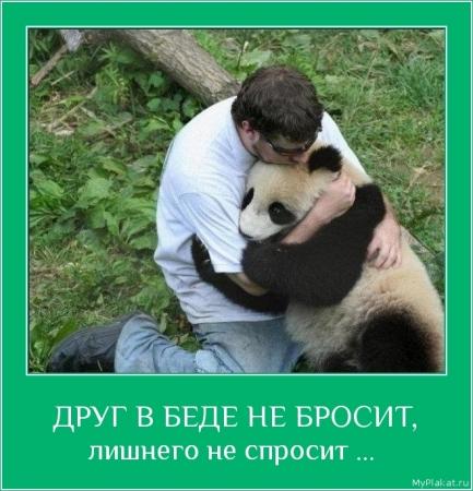 ДРУГ В БЕДЕ НЕ БРОСИТ,