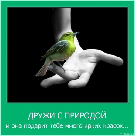 ДРУЖИ С ПРИРОДОЙ