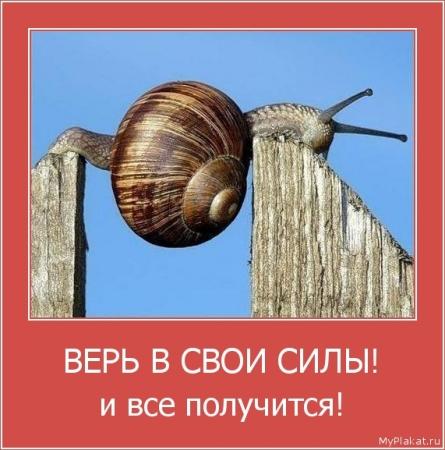 ВЕРЬ В СВОИ СИЛЫ!