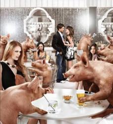 ТРЕЗВЫЙ ГЛАЗ! - как минимум способен увидеть в пьянице свинью