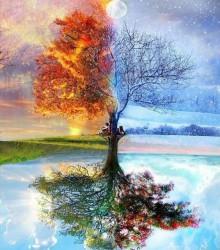 ЧЕЛОВЕЧЕСТВО - коррозия планеты, разрушающая ее естественные связи