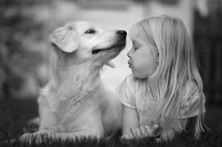ХОЧЕШЬ КУПИТЬ ЛЮБОВЬ ЗА ДЕНЬГИ? - купи собаку