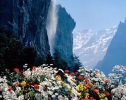 КАЖДОЕ УТРО НЕБЕСА ПОЛИВАЮТ САД - нашего сознания, чтобы цветы духа не завяли
