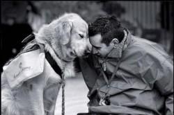 БОЖЕ, ПОМОГИ МНЕ БЫТЬ ТАКИМ, - каким считает меня моя собака
