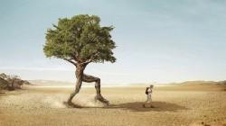 Когда ты будешь ценить то, что у тебя есть, а не жить в поиске идеалов, -  тогда ты по-настоящему станешь счастливым...
