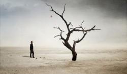 Если Вы недовольны тем местом, которое занимаете  -  смените его! Вы же не дерево!